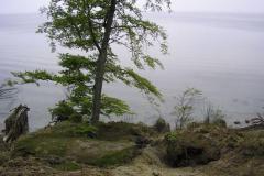 maj2006021